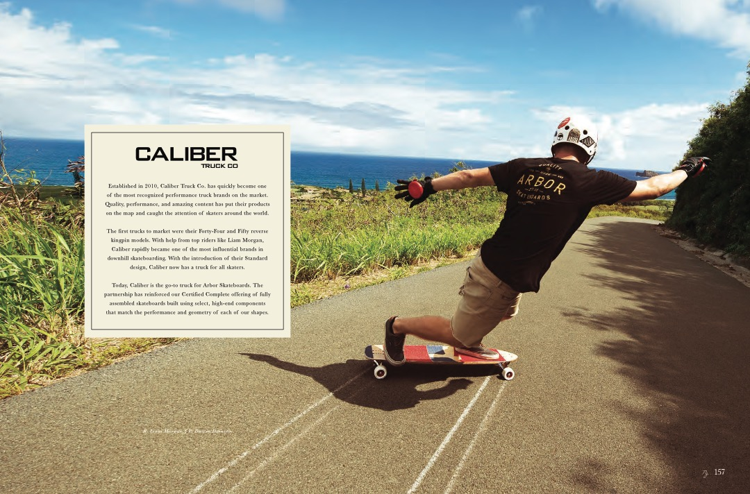 ARBOR_20YR_Catalog_Skate_LowRes 39