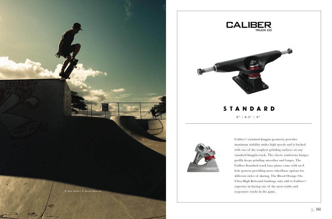 ARBOR_20YR_Catalog_Skate_LowRes 41