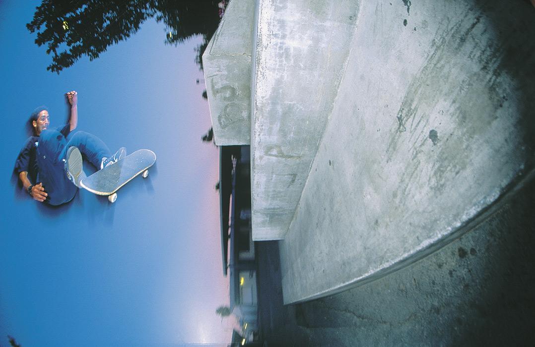 Day-skater